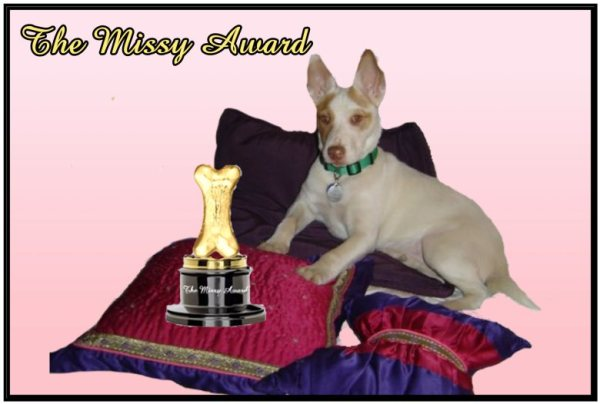 the-missy-award
