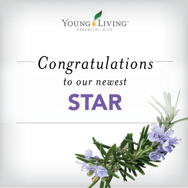 YL Star